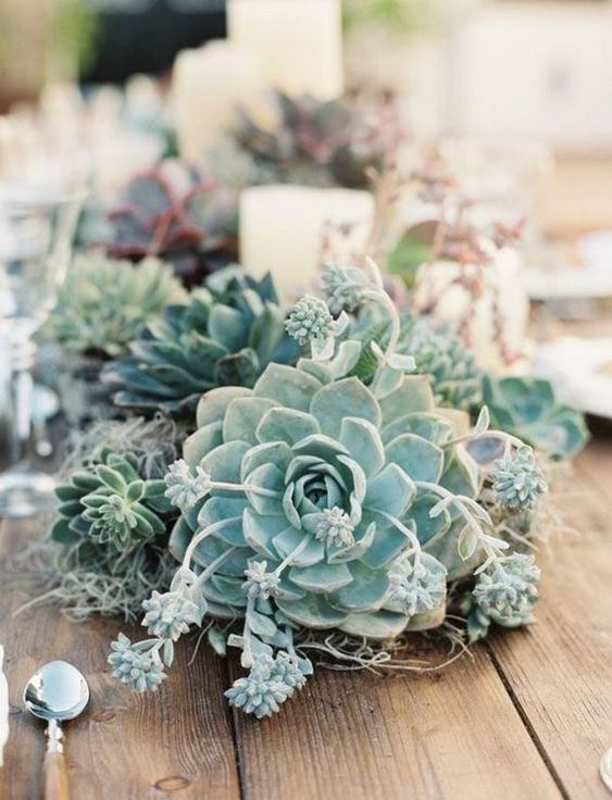 a wedding centerpiece of succulents and moss plus pillar candles is a nice and bold idea