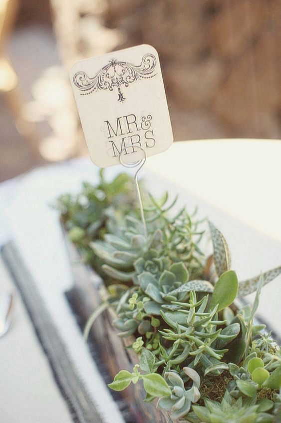 a beautiful wedding centerpiece with succulents and greenery and a topper is a stylish modern wedding decor idea