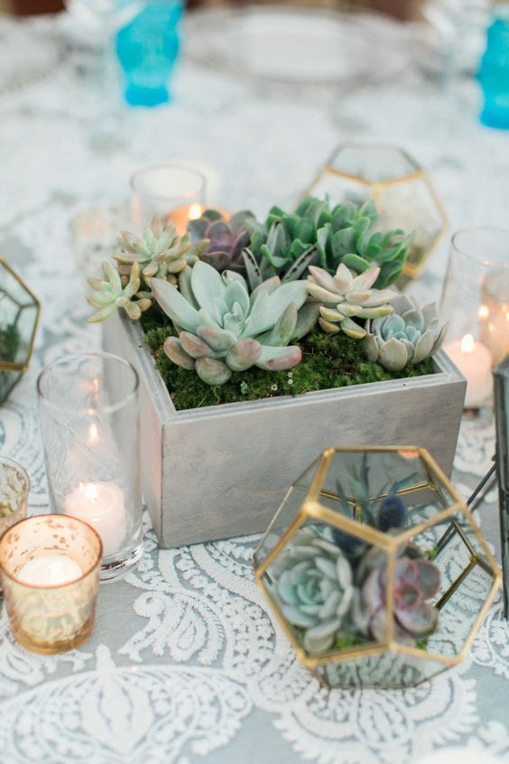 a casual wedding centerpiece of a box planter with moss and various succulents and a gilded terrarium with succulents