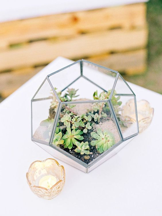 a terrarium with succulents and rocks plus candles is an edgy and stylish idea of a centerpiece