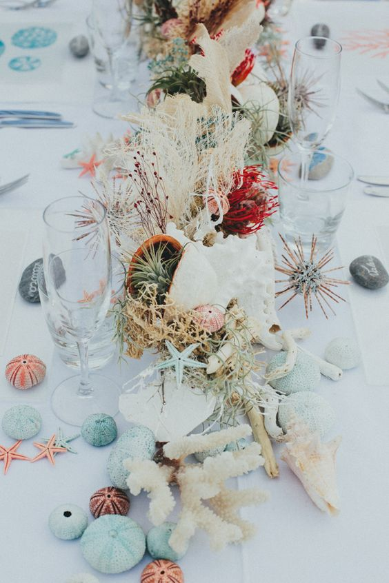 a beach composition of blue and coral sea urchins, starfish, driftwood, seashells, air plants and corals catches an eye