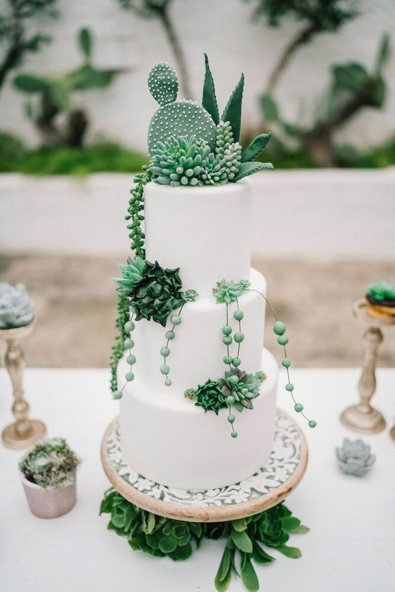 a white sleek wedding cake with real and sugar succulents and cacti is chic and stylish