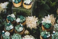 fun succulent and cacti cupcakes – no real plants, only icing that looks cool