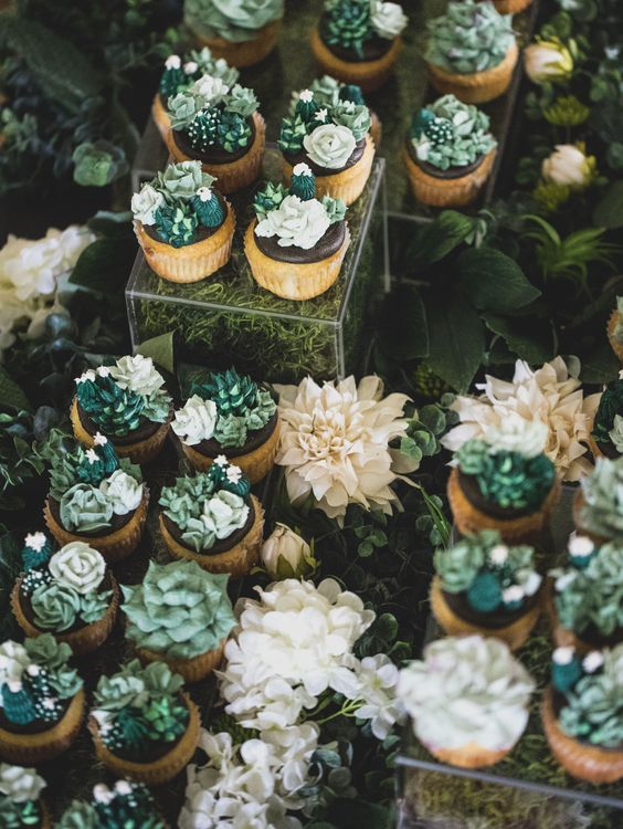 fun succulent and cacti cupcakes - no real plants, only icing that looks cool