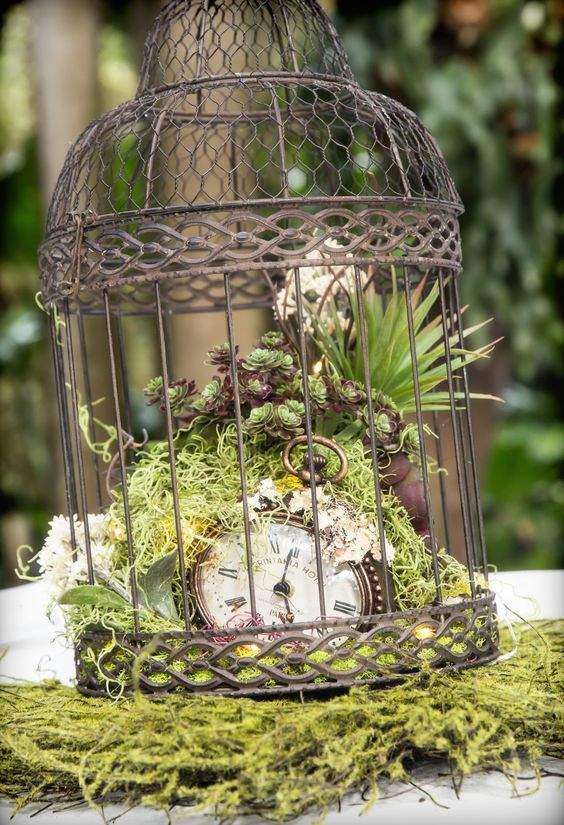moss, greenery, succulents, air plants and a vintage pocket watch in a vintage cage for a beautiful and unique centerpiece