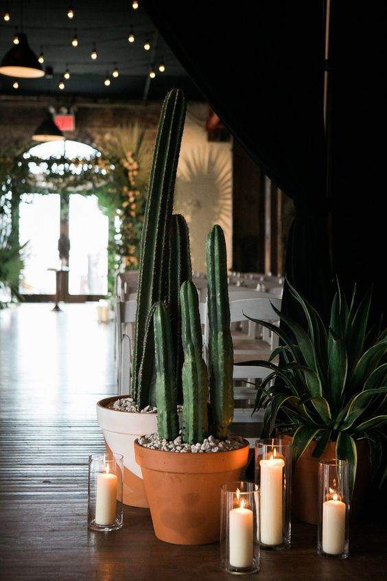 oversized cacti and succulents in pots and candles for deecorating your wedding venue