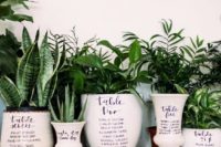 potted succulents and greenery in vases will compose a cool wedding seating chart for a nature-themed wedding