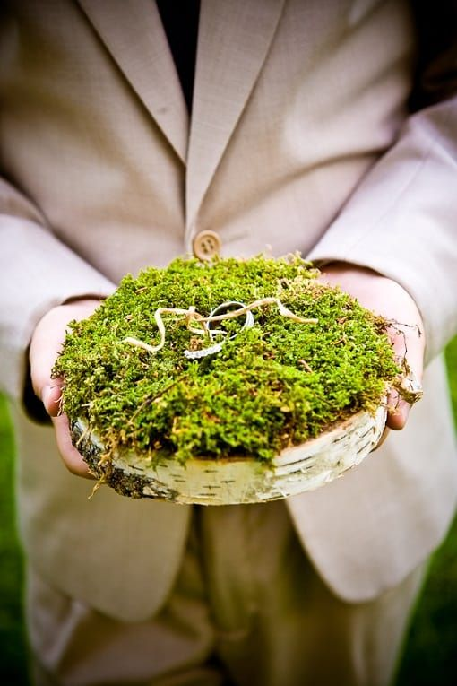a birch slice with moss on top is a very natural idea for a woodland or forest wedding
