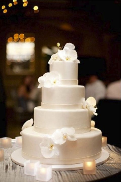 a plain white wedding cake with white orchids is pure and timeless elegance, which never goes out of style