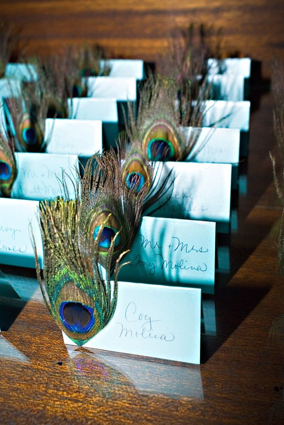 blue cards with peacock feathers make the place cards bold and chic