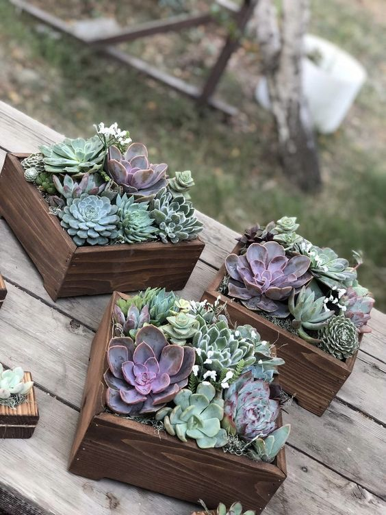 box wedding centerpieces of mint-colored succulents, cacti and purple succulents look super chic and edgy