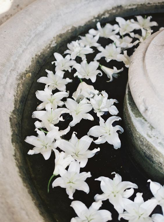 a vintage fountain with floating white lilies is a beautiful and very elegant wedding decor solution to try