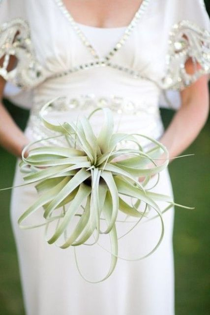 an air plant wedding bouquet is an eco-friendly idea that can be rocked any time and then you may reuse this plant