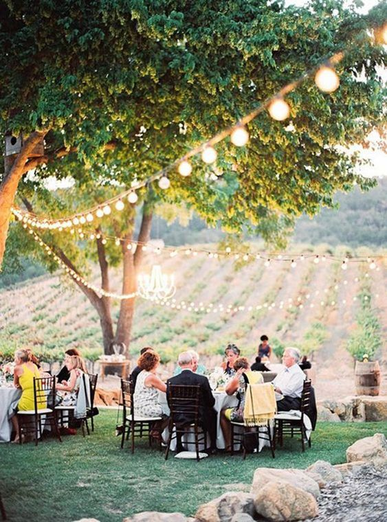 a beautiful and homey wedding vineyard reception under the trees with lights and with a view of the vines