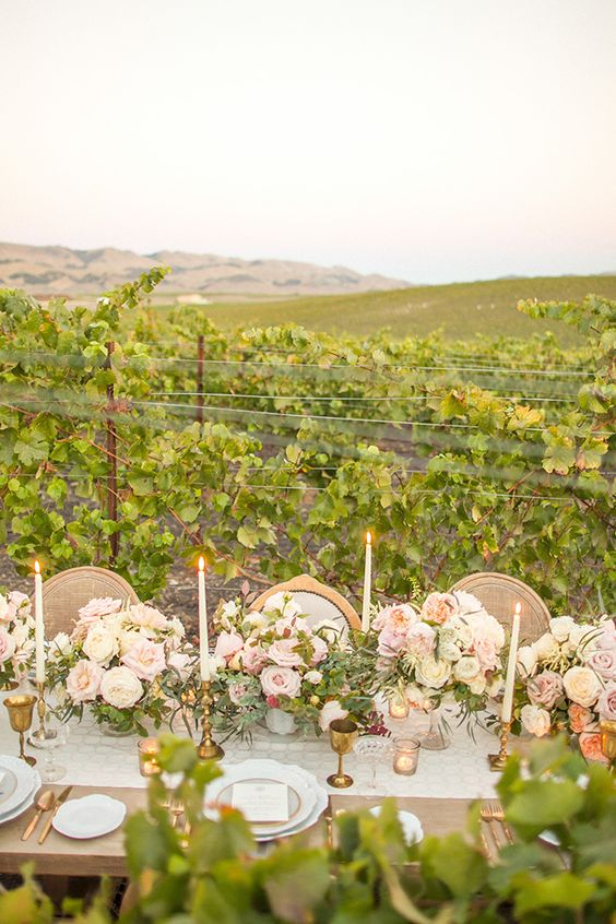 a vintage vineyard wedding reception right in the vines, with neutral and pastel blooms, neutral linens and gilded touches is wow