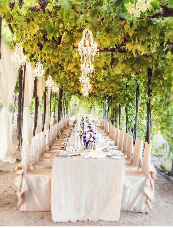 a wonderful vineyard wedding reception with vines, curtains, crystal chandeliers, neutral linens and chair covers plus lilac blooms