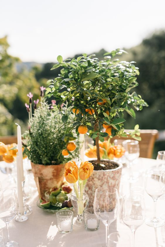 a Tuscany wedding centerpiece of orange tulips, potted greenery and a mini tree is super cool