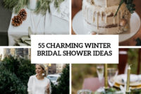 55 charming winter bridal shower ideas cover