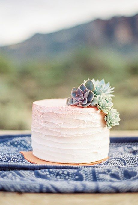 a one tier ombré frosted wedding cake decorated with fresh succulents will add a tender blush accent