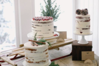 a winter bridal shower dessert table with three naked cakes topped with berries, cinnamon and pinecones