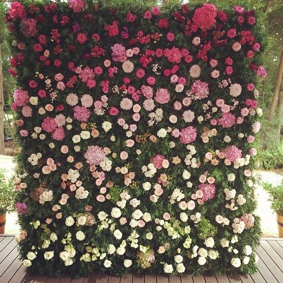 a swooning flower backdrop from fuchsia to light pink and white and textural greenery in between