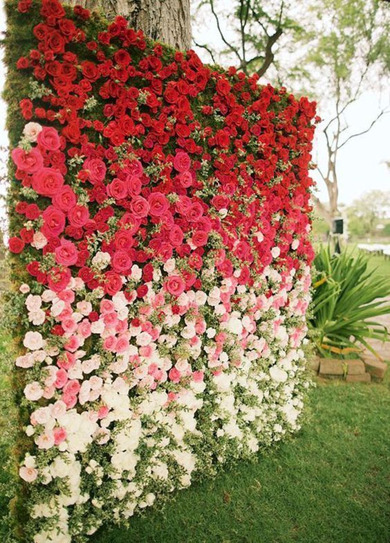 an ombre floral wall from red to light pink and white blooms plus textural greenery for a bold wedding backdrop