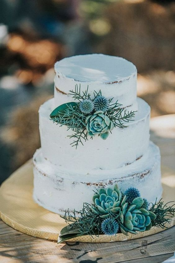a naked wedding cake decorated with succulents, thistles and leaves for a rustic wedding