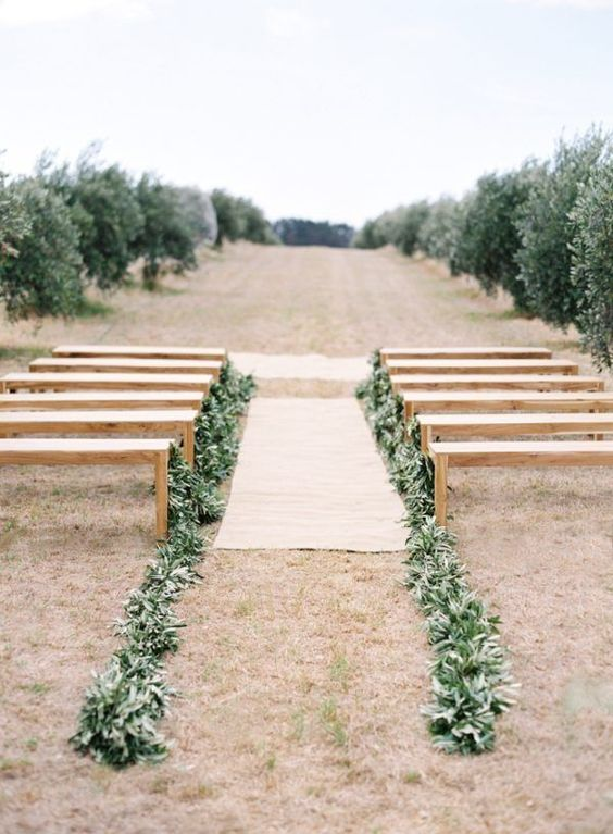 line up the aisle with olive greenery and make the wedding ceremony space fresher and greener
