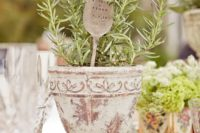 a shabby chic planter with potted greenery and a spoon marker with your names and a date will be a nice rustic centerpiece