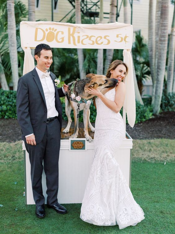 a whimsy idea   a dog kissing booth   offer your dogs' kisses to let them participate in the wedding