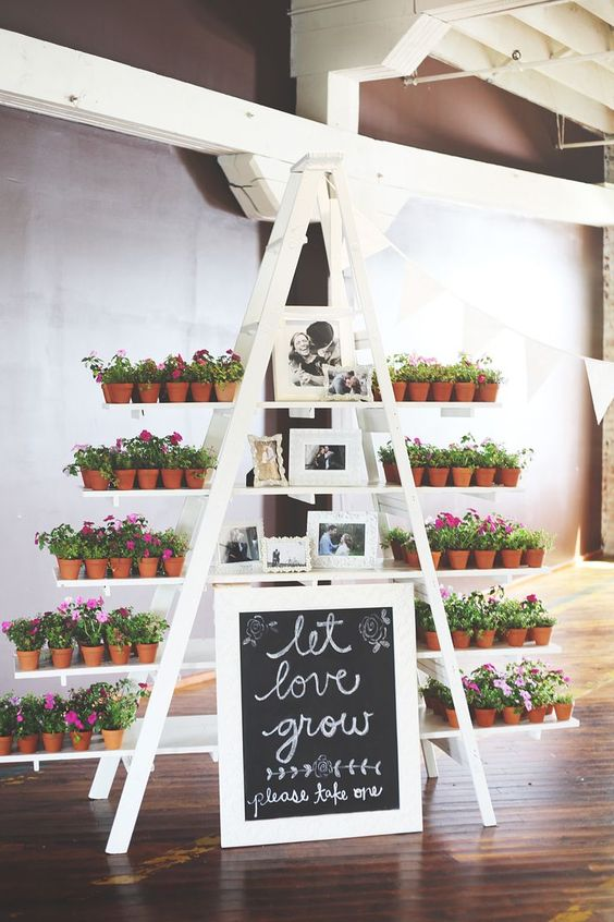 a white ladder with blooming flowers in pots and family photos and a chalkboard sign