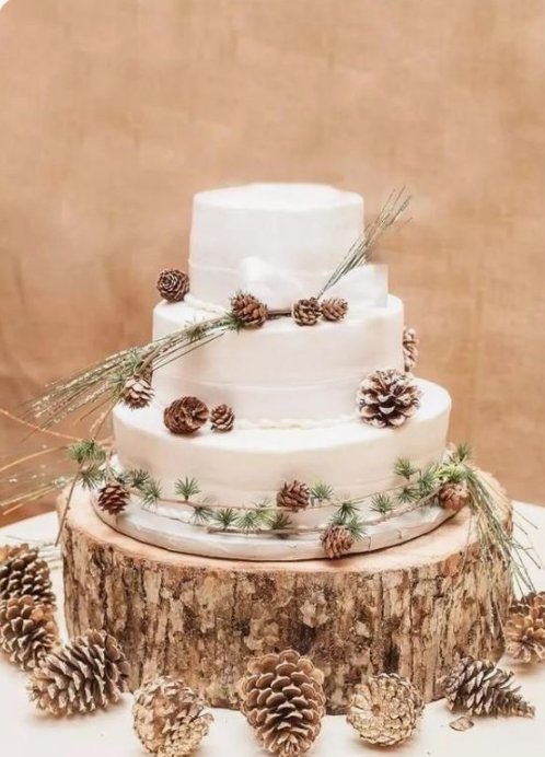 a white wedding cake with white ribbons, pinecones and evergreens looks very cozy and rustic
