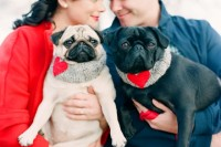 a cozy and sweet Valentine engagement photo with the couple's dogs dressed up in heart scarves and looking cool