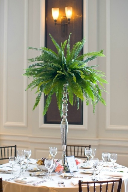 Picture Of Elegant Ways To Incorporate Ferns Into Your Wedding 17