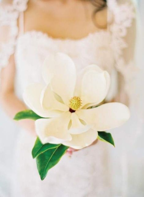 a large single magnolia bloom wedding bouquet is a cool idea for a bride who wants a special wedding bouquet of a single stem
