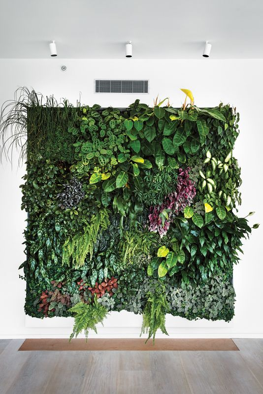 a lush botanical wedding backdrop of various kinds of foliage and greenery, grasses and blooms of various colors