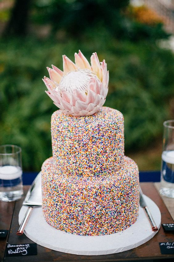 a catchy sprinkle wedding cake topped with a large king protea is a very modern and chic idea