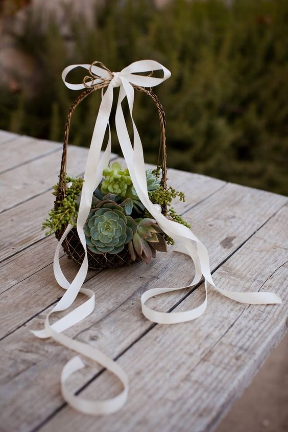 a vine basket with lots of succulents and a large ribbon bow is a trendy idea