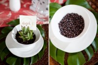 succulents planted into bowls and covered with coffee beans with place cards are creative wedding favors