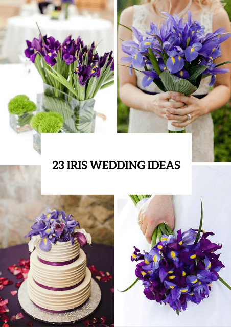 23 Amazing Ideas To Incorporate Irises Into Your Wedding