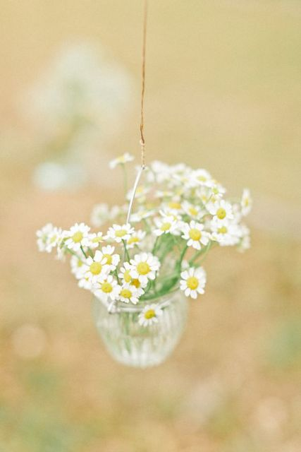 Picture Of Romantic Ideas To Incorporate Chamomile Daisies Into Your Wedding 10