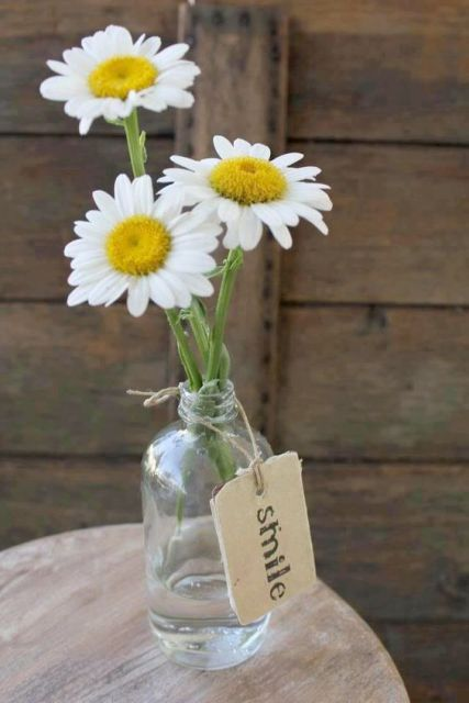 Picture Of Romantic Ideas To Incorporate Chamomile Daisies Into Your Wedding 11
