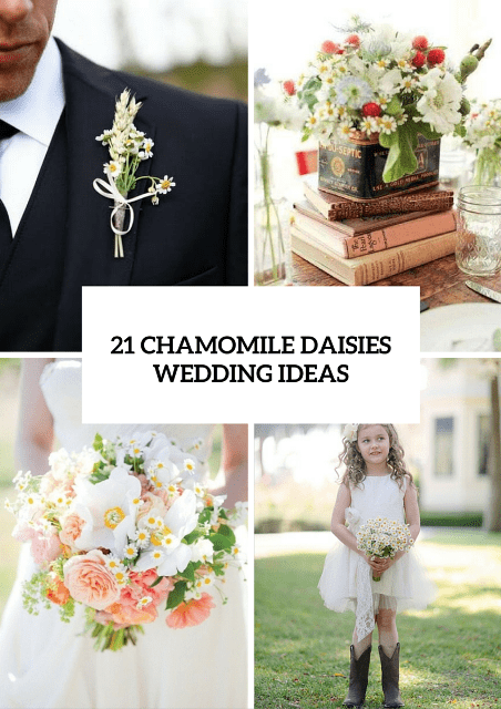 21 Romantic Ideas To Incorporate Chamomile Daisies Into Your Wedding