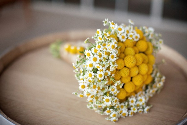 Picture Of Romantic Ideas To Incorporate Chamomile Daisies Into Your Wedding 6