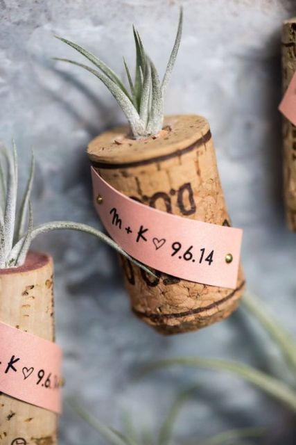 Picture Of Original Ideas To Incorporate Airplants Into Your Wedding 15