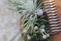 22 Original Ideas To Incorporate Airplants Into Your Wedding 16