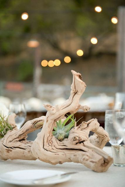 Picture Of Original Ideas To Incorporate Airplants Into Your Wedding 2