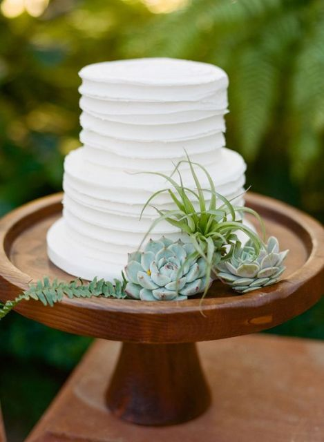 Picture Of Original Ideas To Incorporate Airplants Into Your Wedding 6