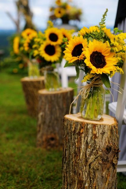 jars with sunflowers placed on tree stumps are cool rustic aisle liners for a summer wedding