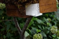 a wooden mailbox with moss on top is standing on a large branch and is used to display wedding programs